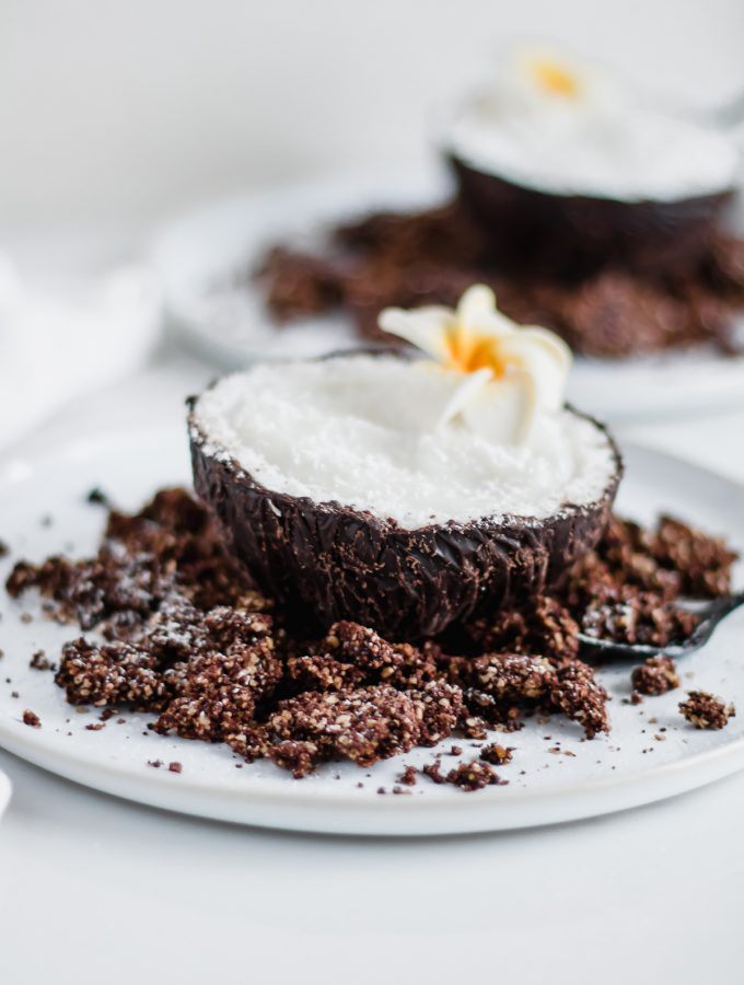 chocolate coconut dessert